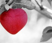 Ljubavni stihovi, pesme i statusi za njega