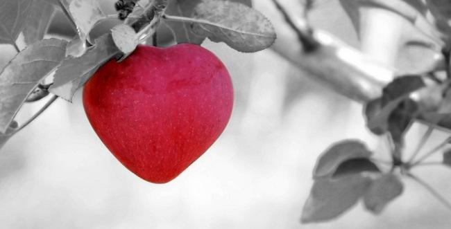 ljubavni-stihovi-pesme-i-statusi-za-njega